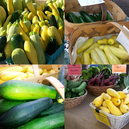 Summer squash collage
